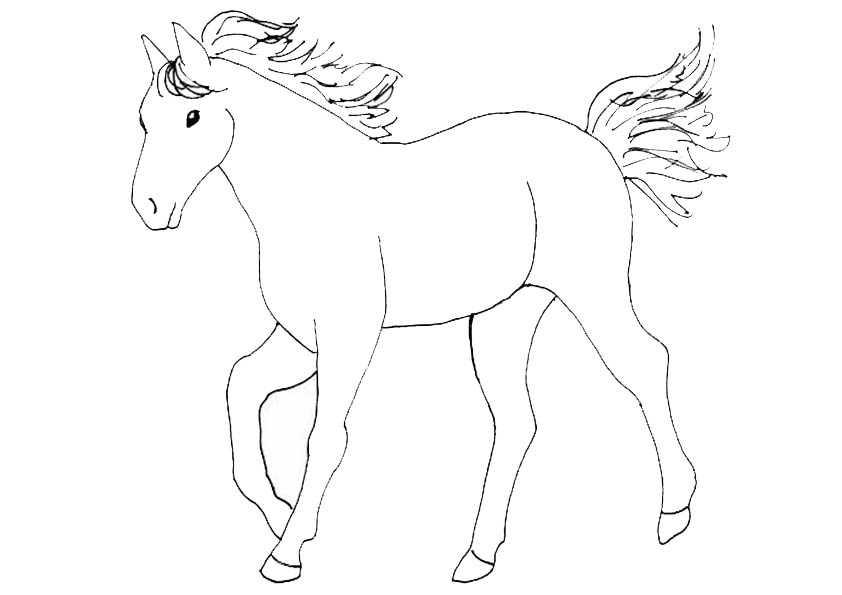 pferde 7 malvorlagen