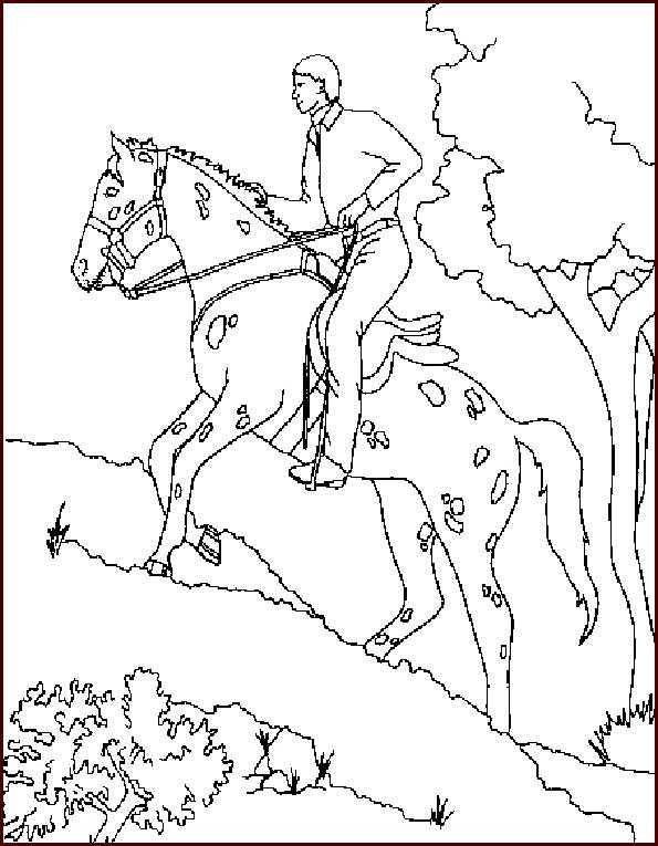 pferde mit reiter 4 ausdrucken