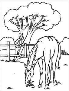 ausmalbilder pferde 1