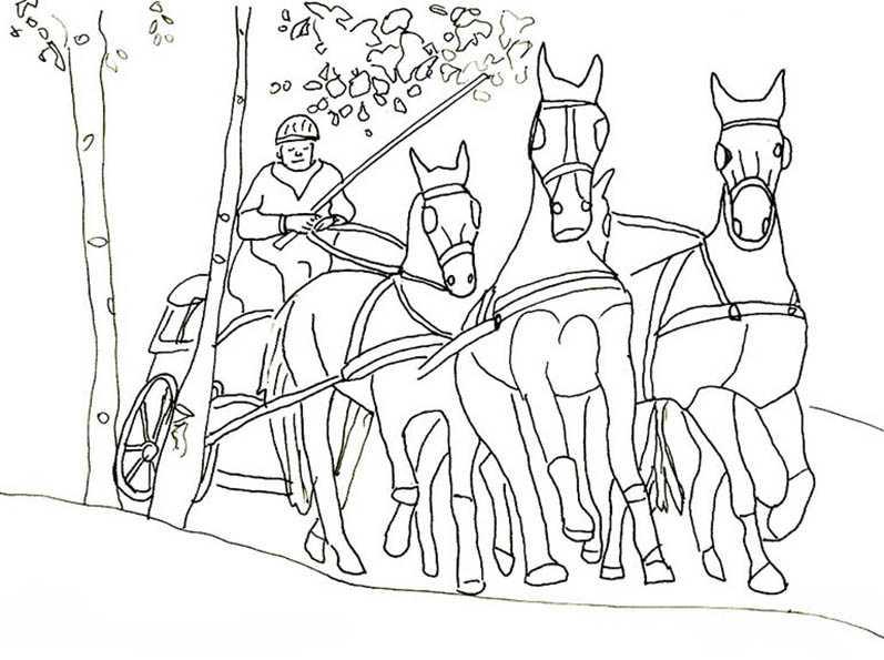 pferde mit kutsche 9