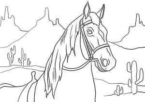 ausmalbilder pferde 13