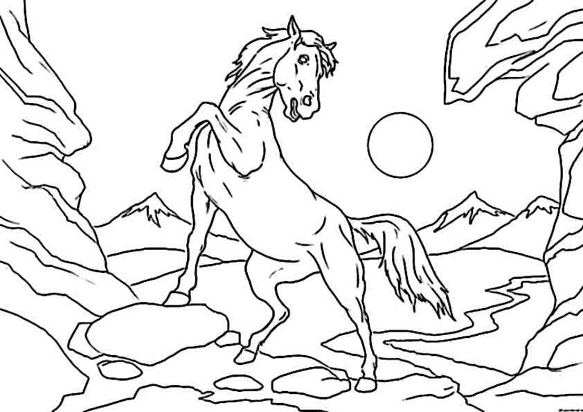 ausmalbilder pferde 59