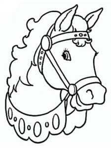 pferd 16
