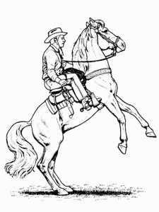 pferd mit reiter 8