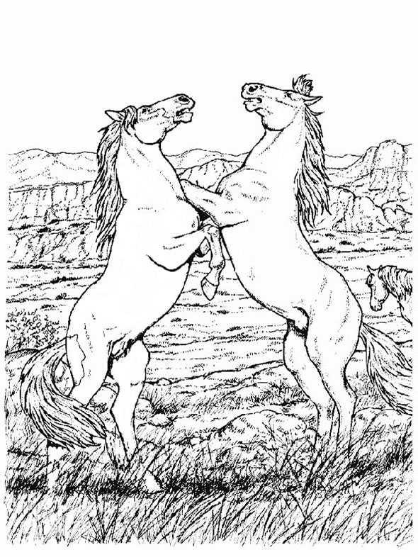 Familien 5 Ausmalbilder Pferde