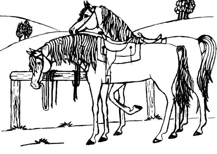 familien pferde ausmalbilder 6