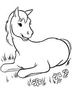 ausmalbilder Pferde (19)