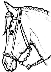 Ausmalbilder Pferde (20)